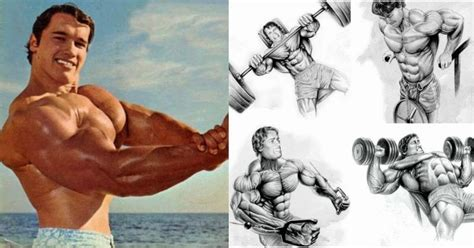 Arnold's Classic Best 4 Exercise Chest Workout Old School!