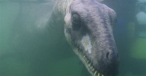 Airport could be named after Loch Ness monster to attract