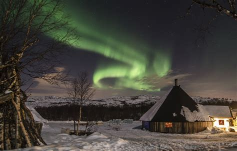 Ice Hotel, Northern Lights & Fjord tour - Fjord Travel Norway