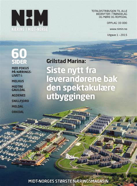 Næring i Midt-Norge 2015-01 by Robin Lund - Issuu